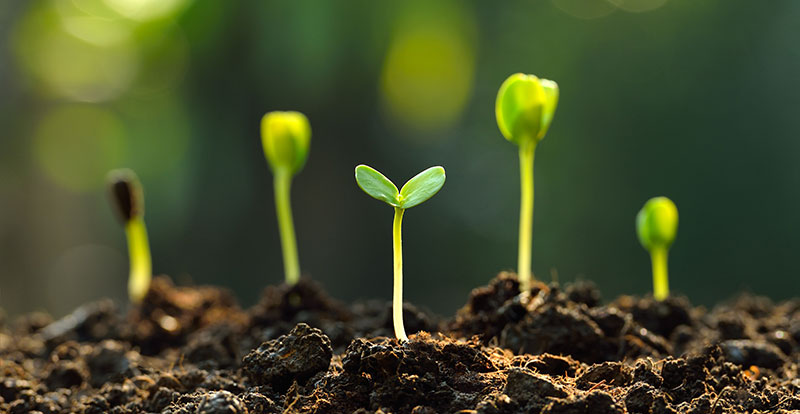 A Quick Guide to the SmartFirmer & the Benefits for Your Farm